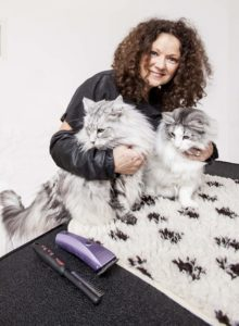 online cat grooming lessons and cat grooming advice