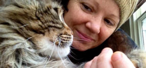 Are you seeking a vet recommended cat behaviourist?