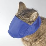 cat-grooming-expert-talks-about-cat-muzzling