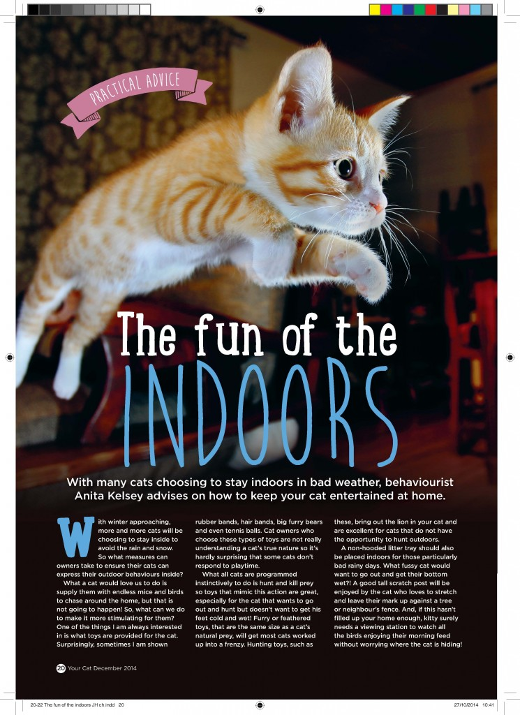 Your Cat magazine article by Anita Kelsey Dec 2014