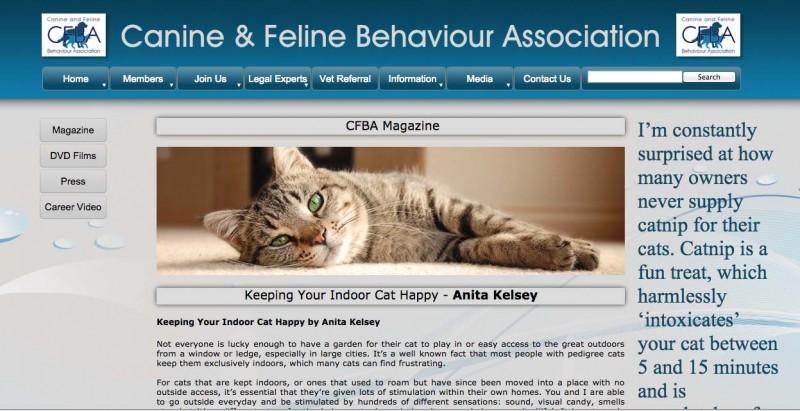 feline behaviourist
