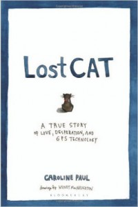lost cat book