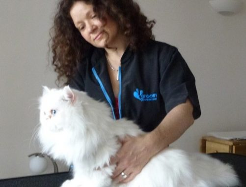 Katzenworld Interview with Cat Behaviourist Anita Kelsey by Marc-André