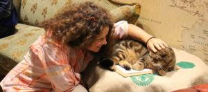 international cat behavior consultant