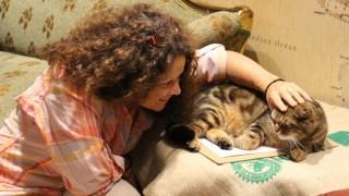 cat behavior skype consultations