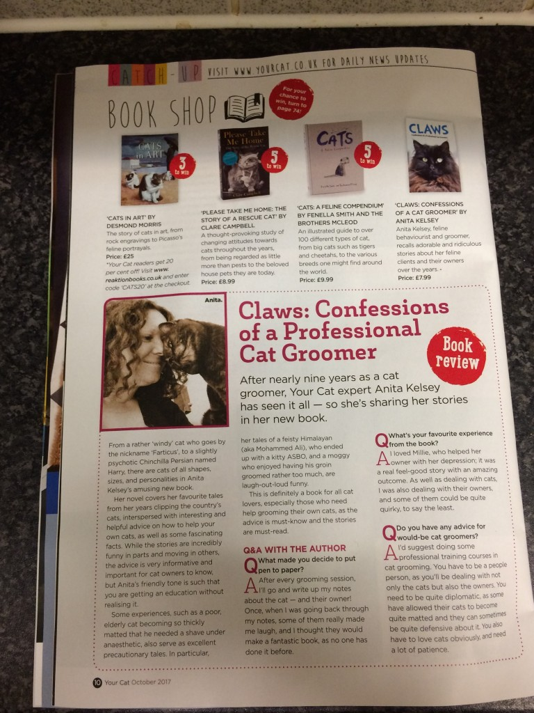 confessions of a professional cat groomer by Anita Kelsey