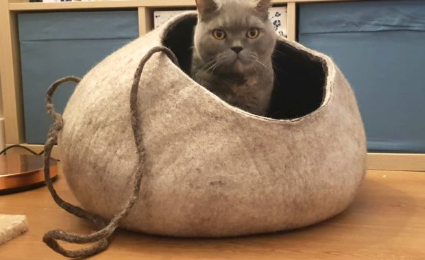 Mimis Daughters Chocolate Condo Cat Cave Bed review