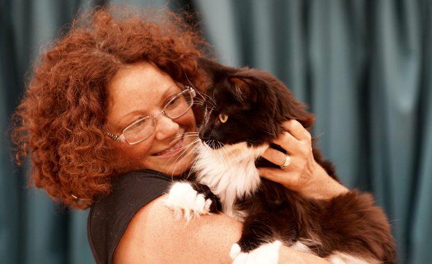 Streatham cat behaviour home visit
