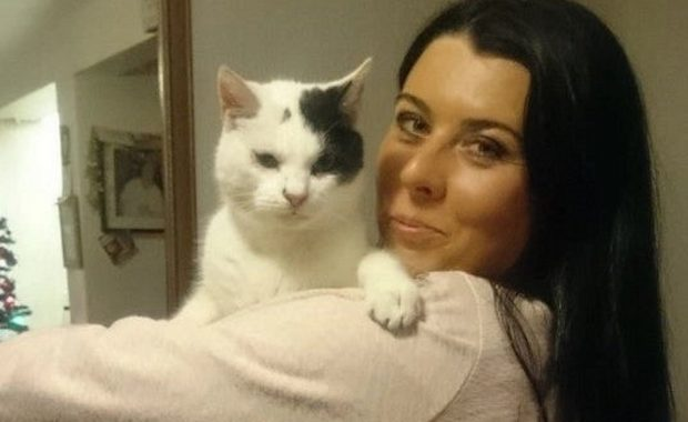 interview with Mandy Hobbis Co founder of CatsMatter