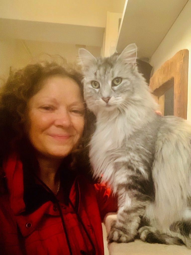 understanding Feline Hyperthyroidism